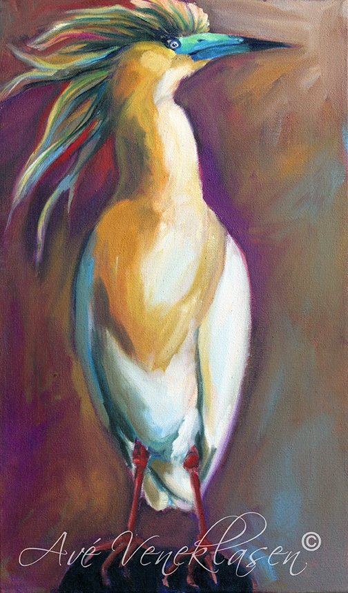 Ave_Veneklasen_Birds_SquaccoHeron_OilPainting